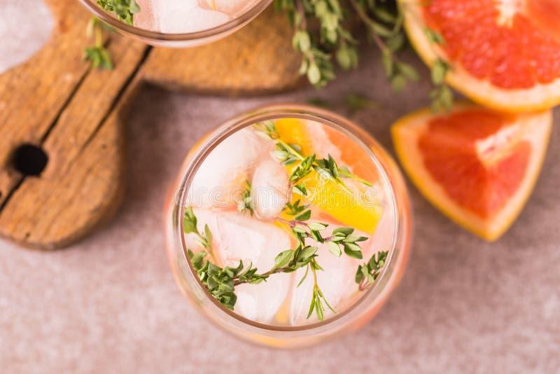 杜松子酒带苦味柠檬用麝香草和葡萄柚 果子柠檬水 免版税库存照片