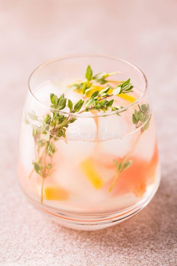 杜松子酒带苦味柠檬用麝香草和葡萄柚 果子柠檬水 图库摄影
