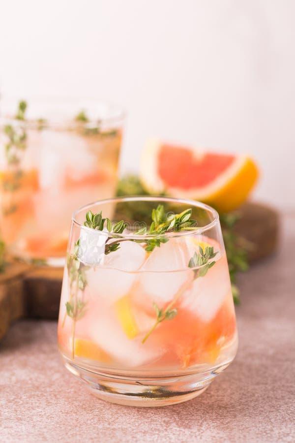 杜松子酒带苦味柠檬用麝香草和葡萄柚 果子柠檬水 免版税库存图片