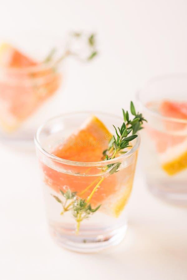 杜松子酒带苦味柠檬用麝香草和葡萄柚 库存图片