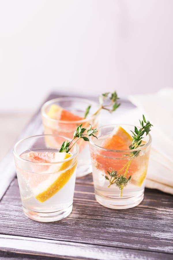 杜松子酒带苦味柠檬用麝香草和葡萄柚 库存照片