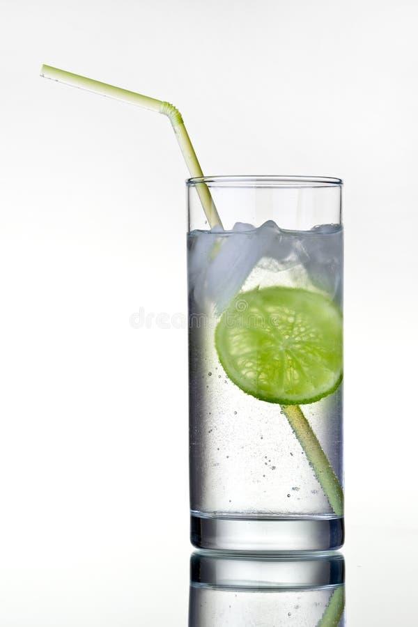 杜松子酒玻璃冰石灰补剂 库存图片