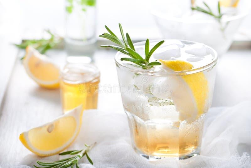 杜松子酒,柠檬,迷迭香嘶嘶响,鸡尾酒 免版税库存图片