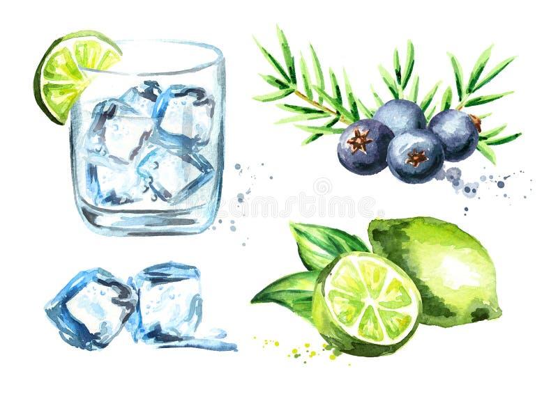 杜松子酒tonik设置了与冰块、石灰和杜松子 在白色背景隔绝的水彩手拉的例证 库存例证