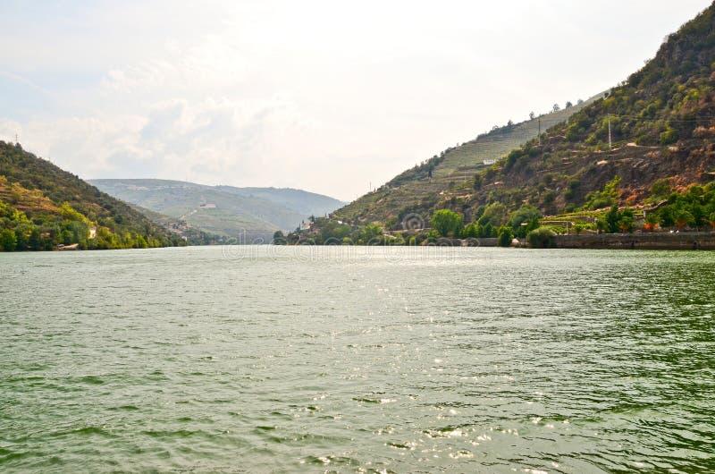 杜罗河谷:杜罗河沿和葡萄园在Pinhao,葡萄牙附近 免版税库存照片
