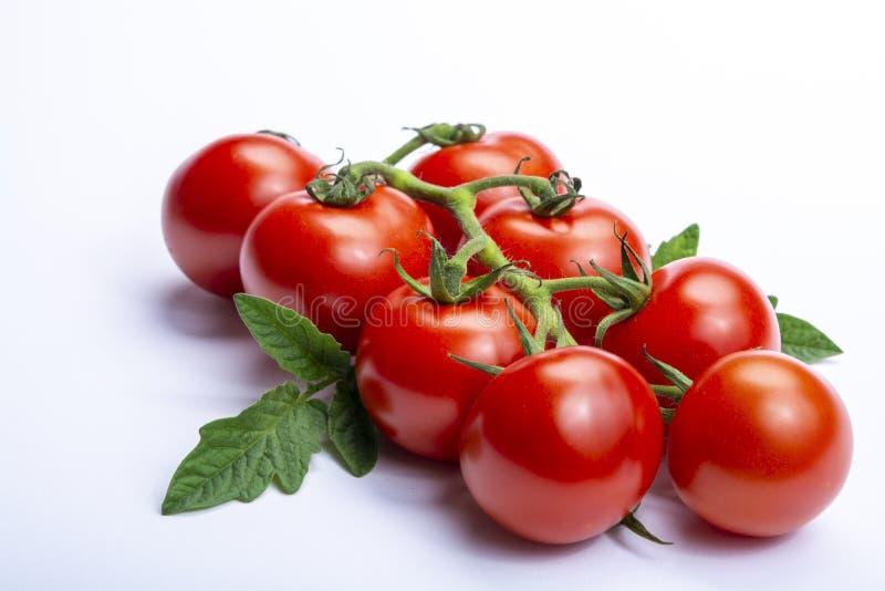 束与在白色背景隔绝的叶子的新鲜的成熟红色蕃茄 免版税库存照片