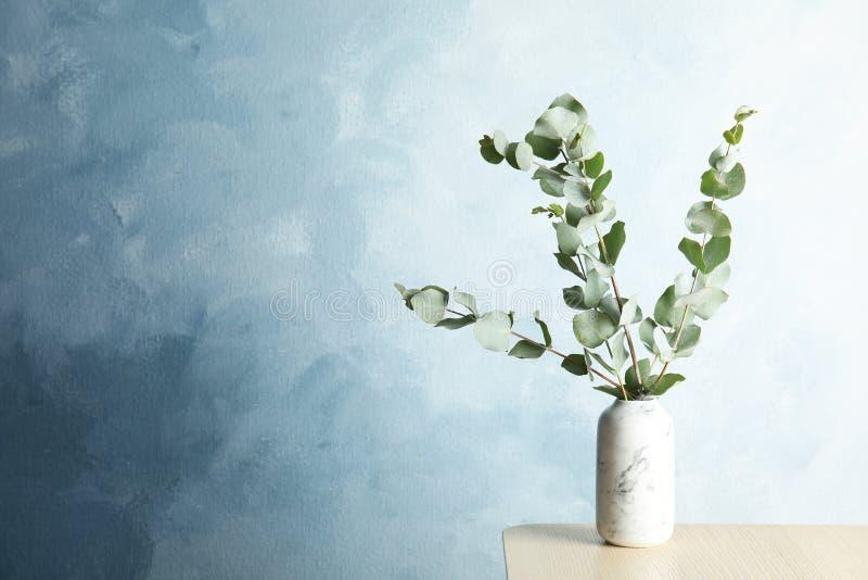 束与新鲜的叶子的玉树分支 图库摄影