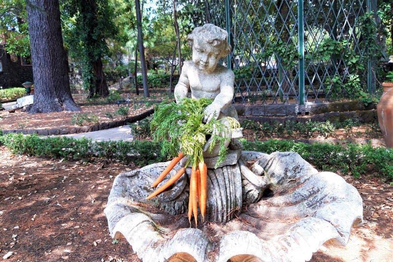 束与绿色叶子的新鲜的红萝卜 库存图片