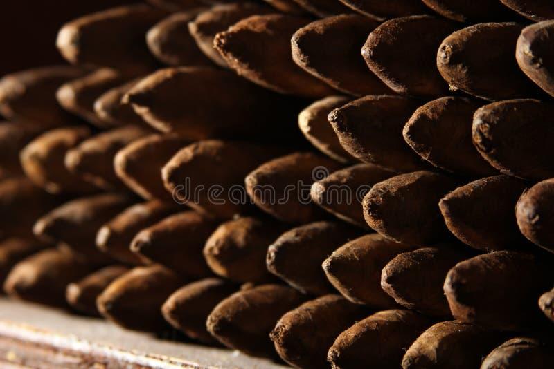 束与阴影的古巴雪茄 免版税图库摄影