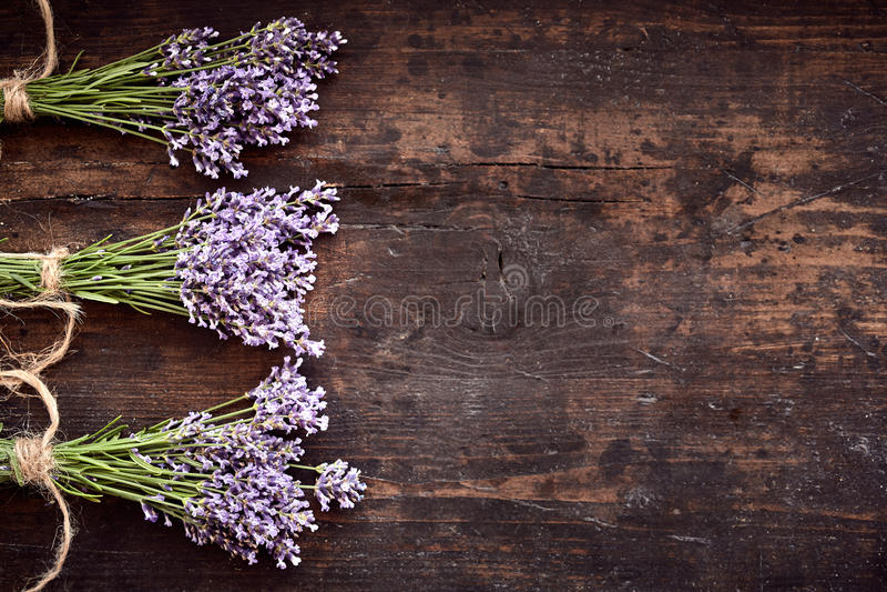 束健康新鲜的芳香淡紫色 免版税库存图片