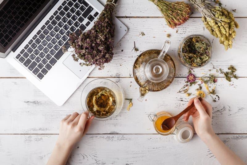 束医药草本、杯子健康茶和袋子在木板的干燥健康coneflowers 作为消沉有效草本金丝桃属植物医学perforatum对待 免版税库存图片