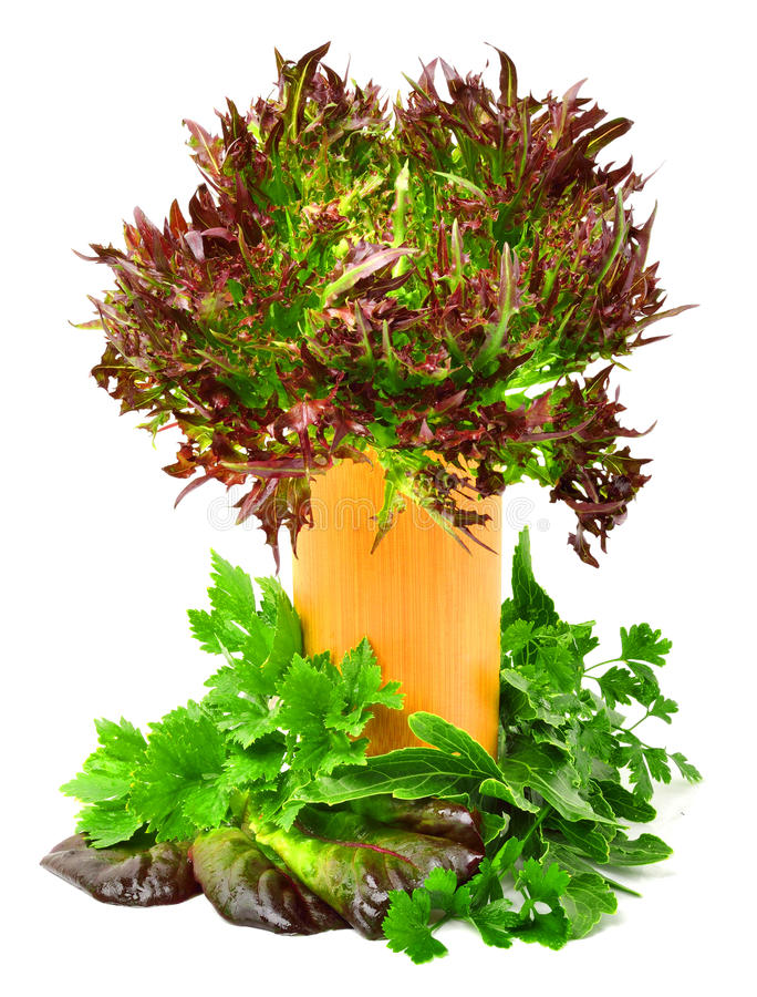 束另外红色和绿色莴苣,菠菜用荷兰芹 图库摄影