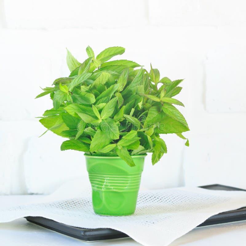 束在一块绿色玻璃的薄菏 免版税库存照片