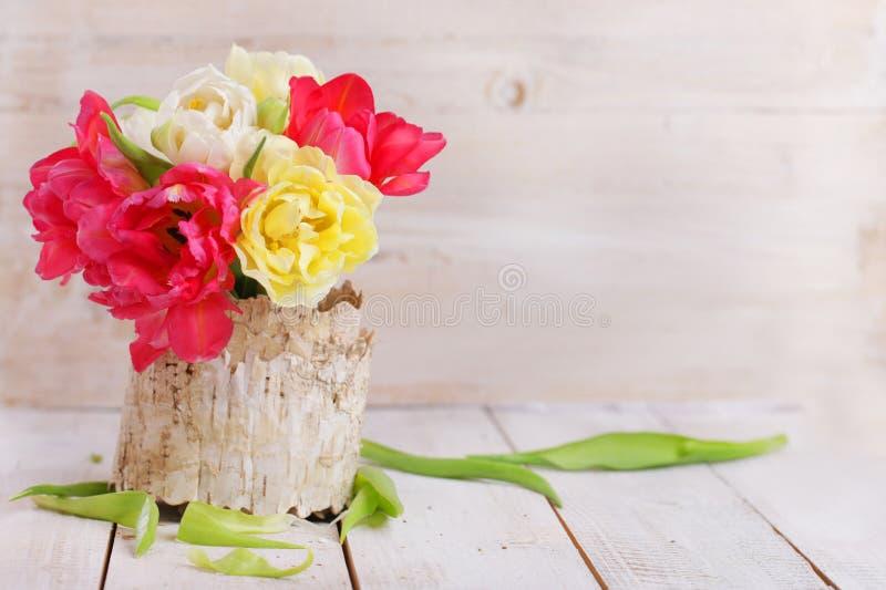 束在木板的白色和红色郁金香 免版税库存照片