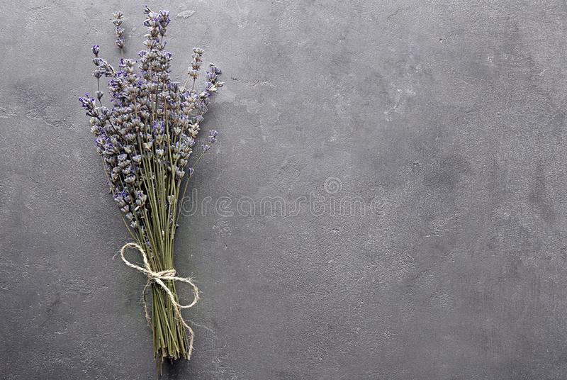 束在灰色背景的美丽的开花的淡紫色花 免版税库存图片