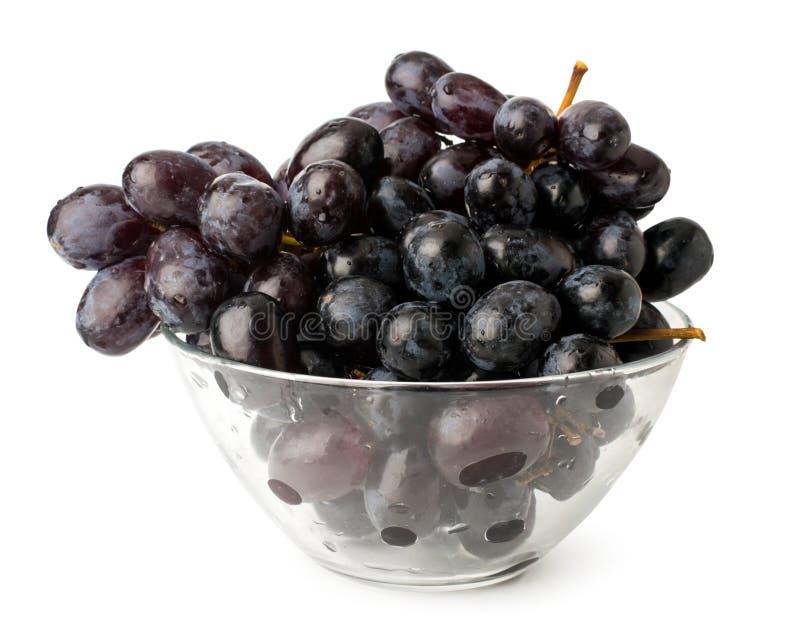 束在玻璃板的蓝色成熟葡萄在白色背景 免版税库存图片