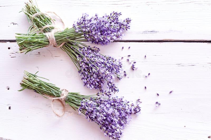 束在白色木头的新鲜的紫色淡紫色 库存照片