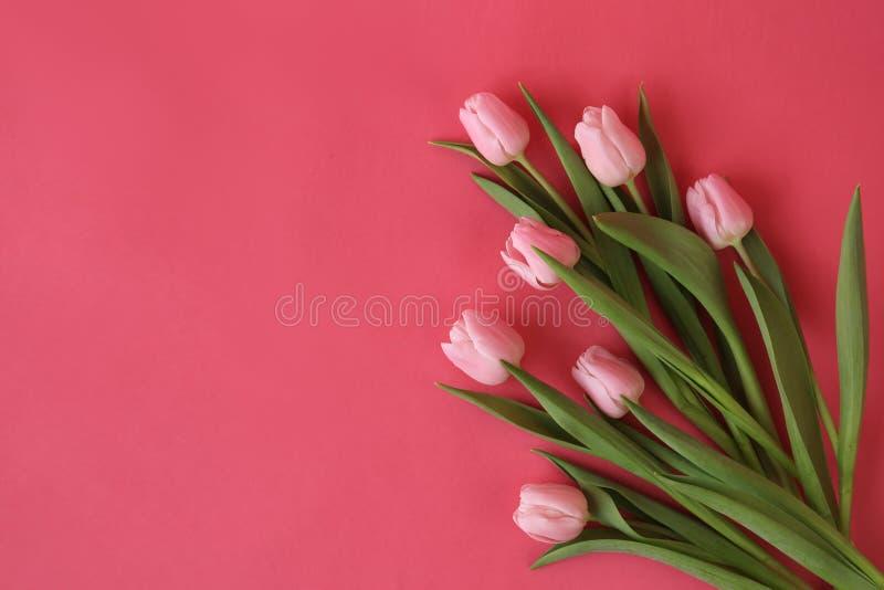 束在绽放的春天郁金香 免版税库存图片
