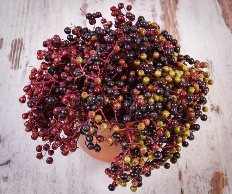 Download 束在老木背景,健康食物的新鲜的接骨木浆果 库存图片. 图片 包括有 通配, 来回, 本质, 发狂, 季节性 - 59110741