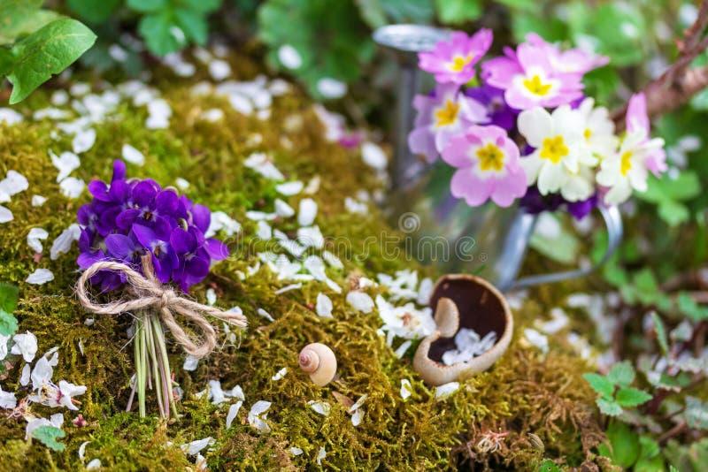 束在青苔背景的野花紫罗兰  库存图片