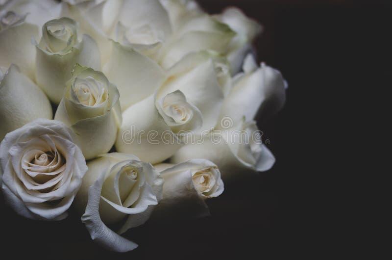 束在黑背景的白玫瑰 免版税库存照片