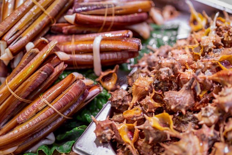 束堆新竹蛏和壳在鱼市上 纳瓦雅斯蛤蜊 r Bokeh 免版税库存图片