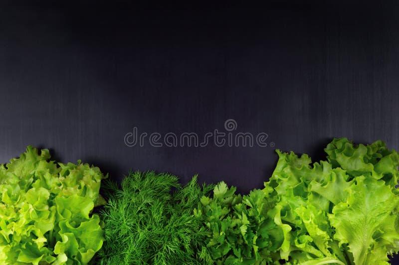 束平位置各种各样的新鲜的绿色厨房草本 parsle 免版税库存图片