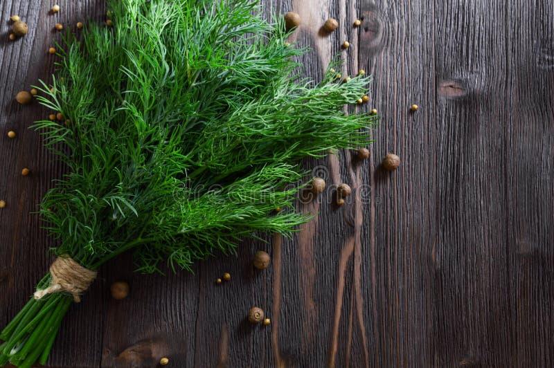 束新鲜的莳萝和香料在黑暗的木背景 o 免版税图库摄影