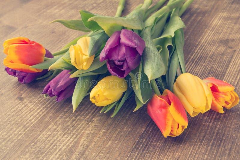 束新鲜的郁金香花 库存照片