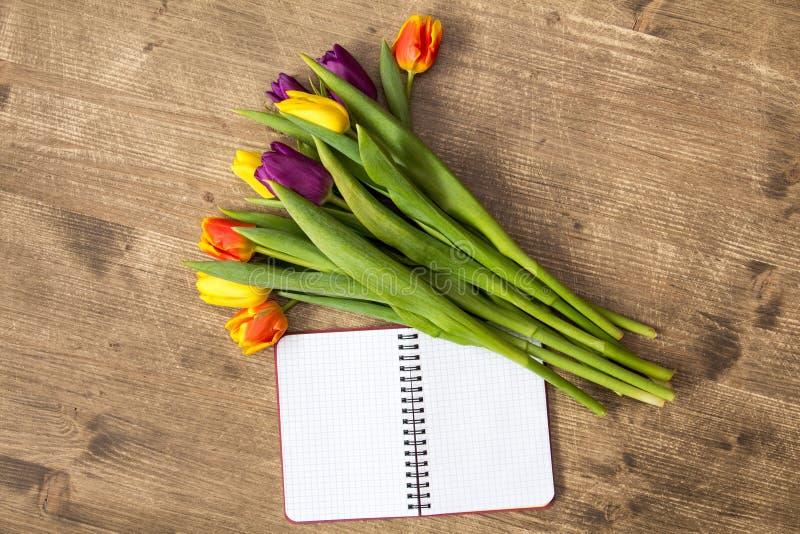 束春天郁金香和空白的笔记本 库存照片