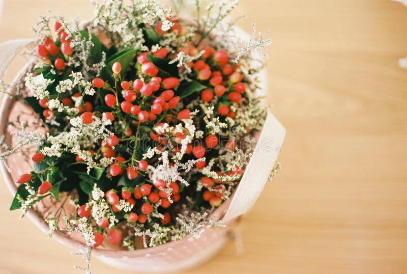 束美丽的红色樱桃 图库摄影