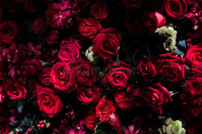 束自然红色玫瑰背景 库存照片