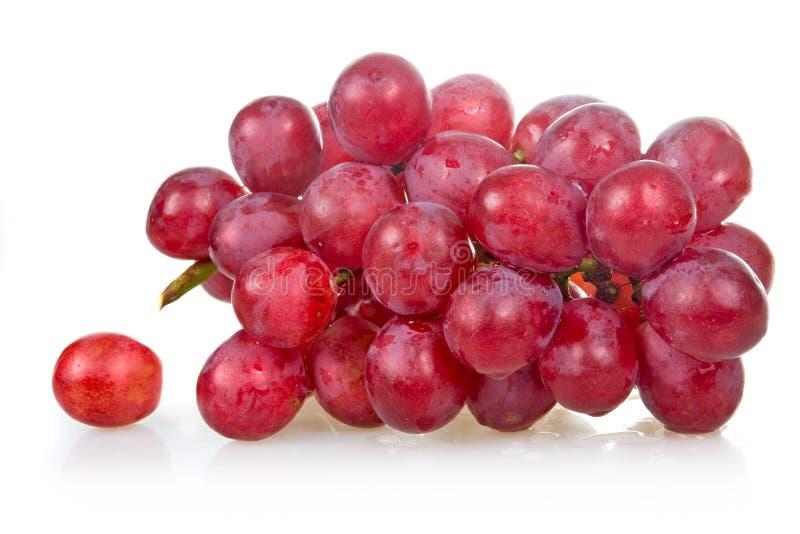 束葡萄查出桃红色成熟 免版税图库摄影