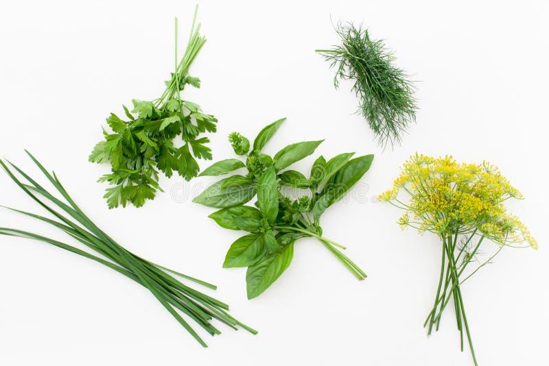 束蓬蒿、荷兰芹、莳萝和jusai在白色 库存照片