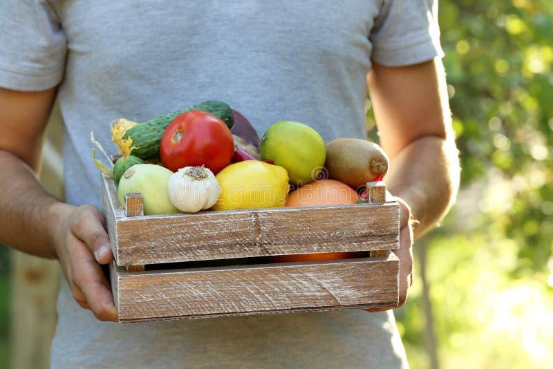 条板箱用水果和蔬菜 免版税库存照片