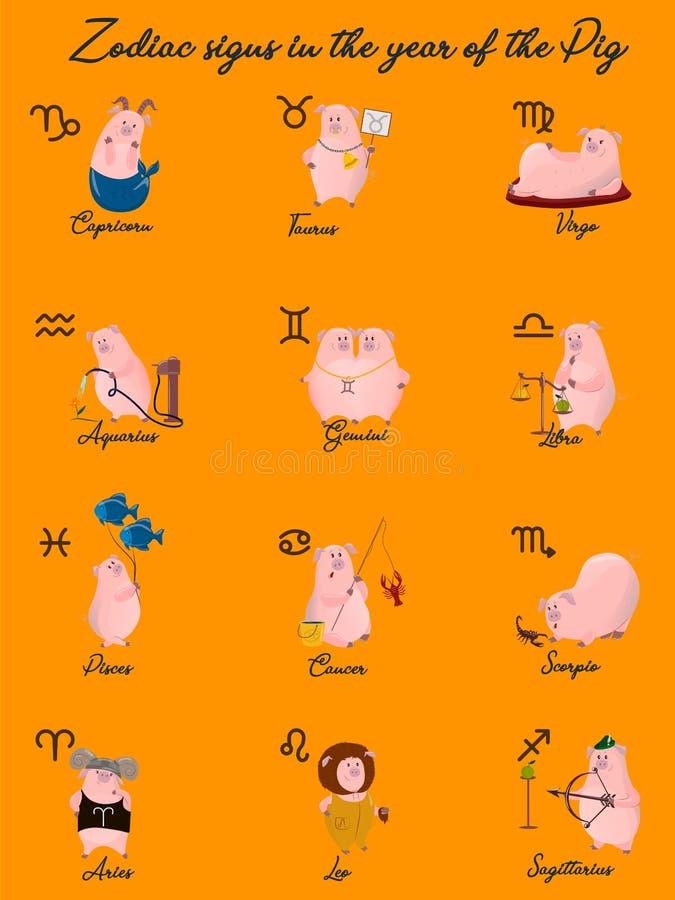 12条黄道带传染媒介签署星座作为猪,2019年的标志 在装饰样式的平的几何象与字法 对horos 库存例证