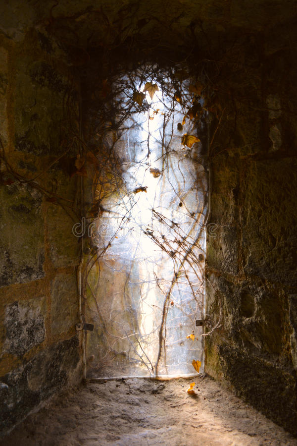 轻来自中世纪城堡, Carisbrooke城堡,纽波特,怀特岛郡,英国一个老哥特式窗口  库存图片