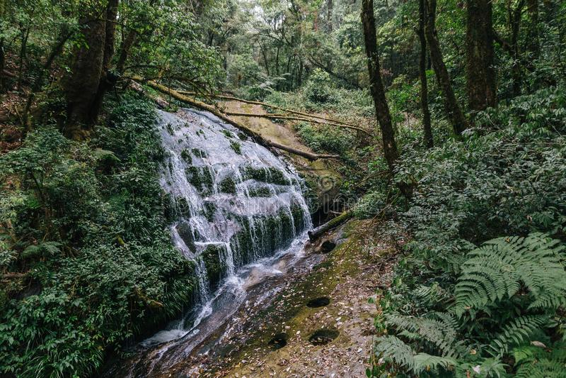 来自山的小瀑布放出 所有射流到砰河和查奥Praya河里 免版税库存照片