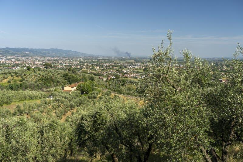 来自托斯卡纳Buggiano Castello的乡村景观 库存图片