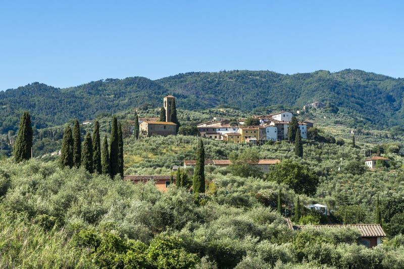 来自托斯卡纳Buggiano Castello的乡村景观 库存照片