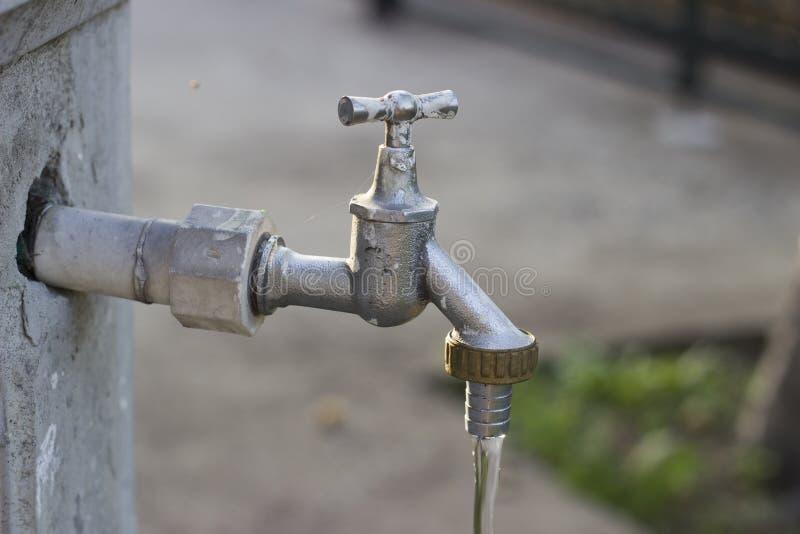 水来自龙头 库存图片