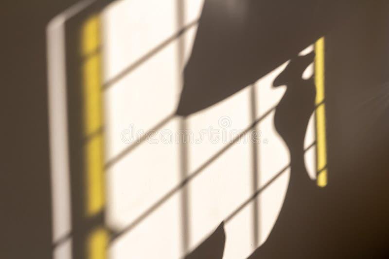 来通过窗口和太阳照明设备的早晨阳光创造被日光照射了灯阴影的一盏灯在墙壁 库存照片