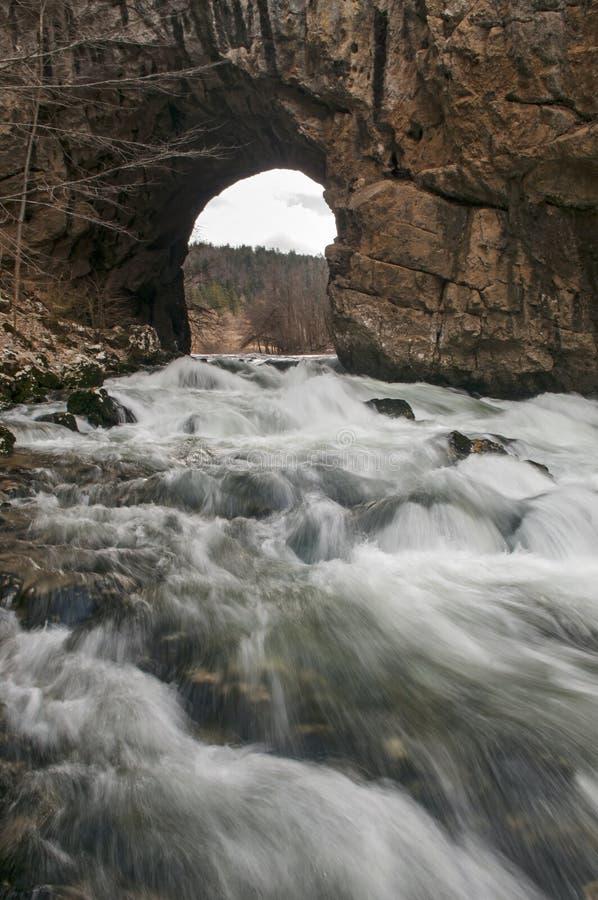 来通过自然过水隧道的淡水狂放的小河 图库摄影