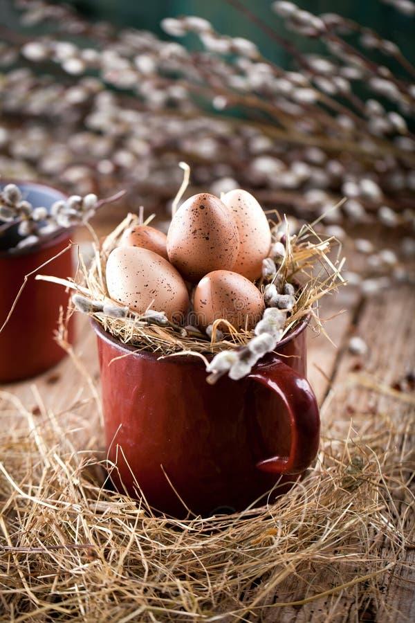 杨柳分支和鹌鹑蛋在木背景 免版税库存照片
