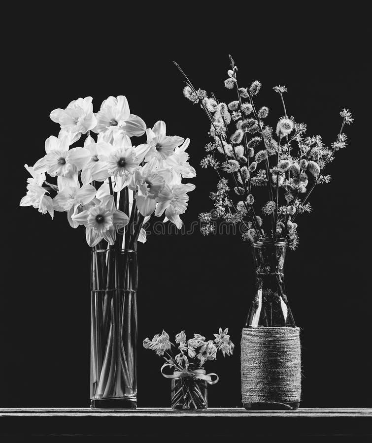 杨柳和山茱萸开花的分支水仙花花束在花瓶,会开蓝色钟形花的草花花束和花束在脉管 免版税库存图片