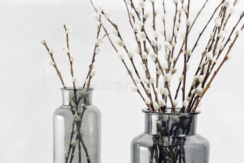 杨柳在一木灰色桌面玻璃花瓶分支 选择聚焦 免版税库存照片