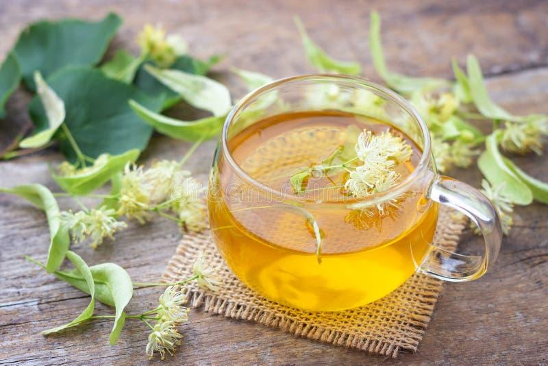 杯与开花的椴树属菩提树,美国鹅掌楸的新鲜的清凉茶 图库摄影