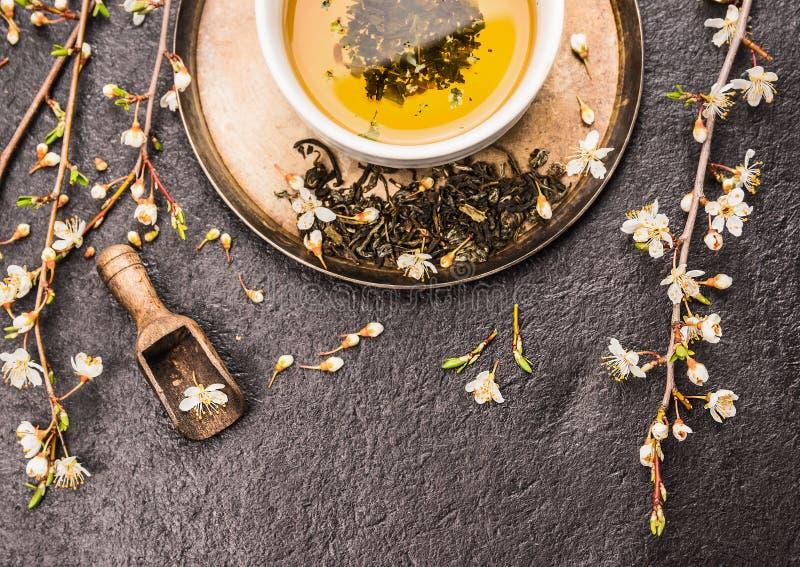 杯与樱花小树枝的绿茶在黑暗的石背景的 库存图片
