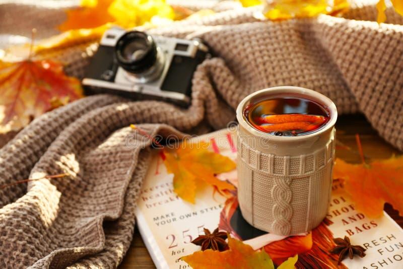 杯与秋叶的可口加香料的热葡萄酒在杂志 免版税图库摄影