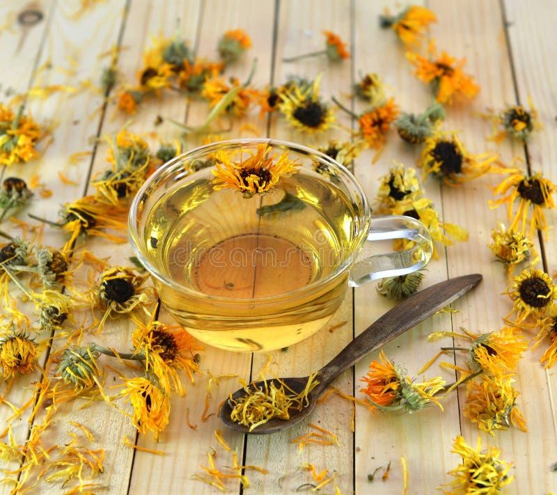 杯与金盏草花的清凉茶 免版税库存图片